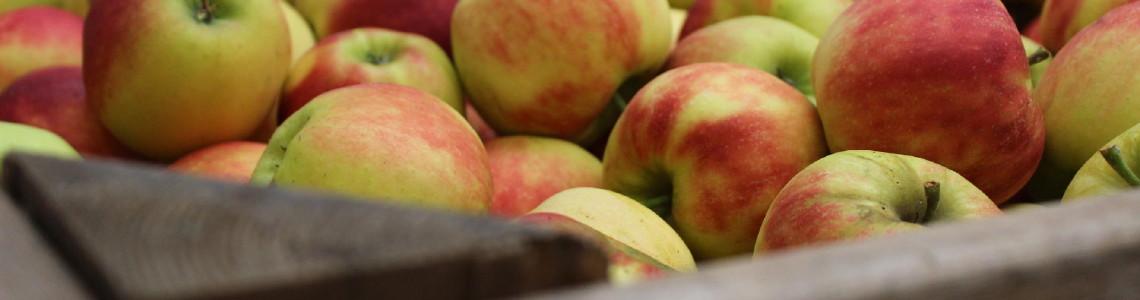 Appel en peren van eigen teelt